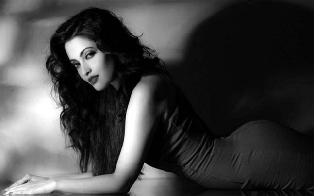 Riya Sen Bollywood Actress 144