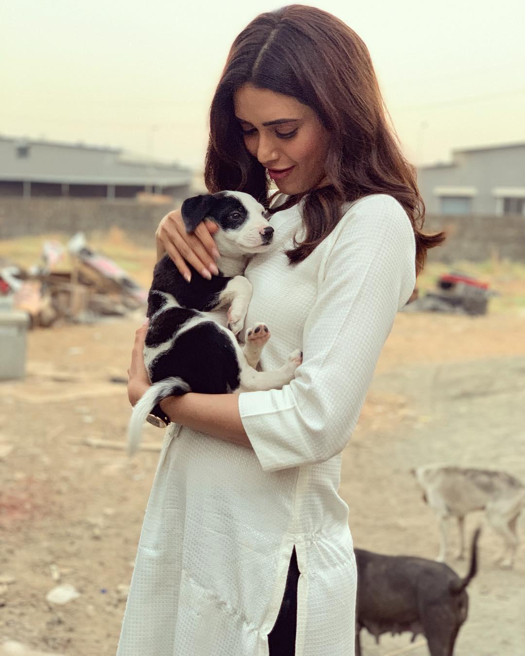 Karishma Tanna bollywood actress 3
