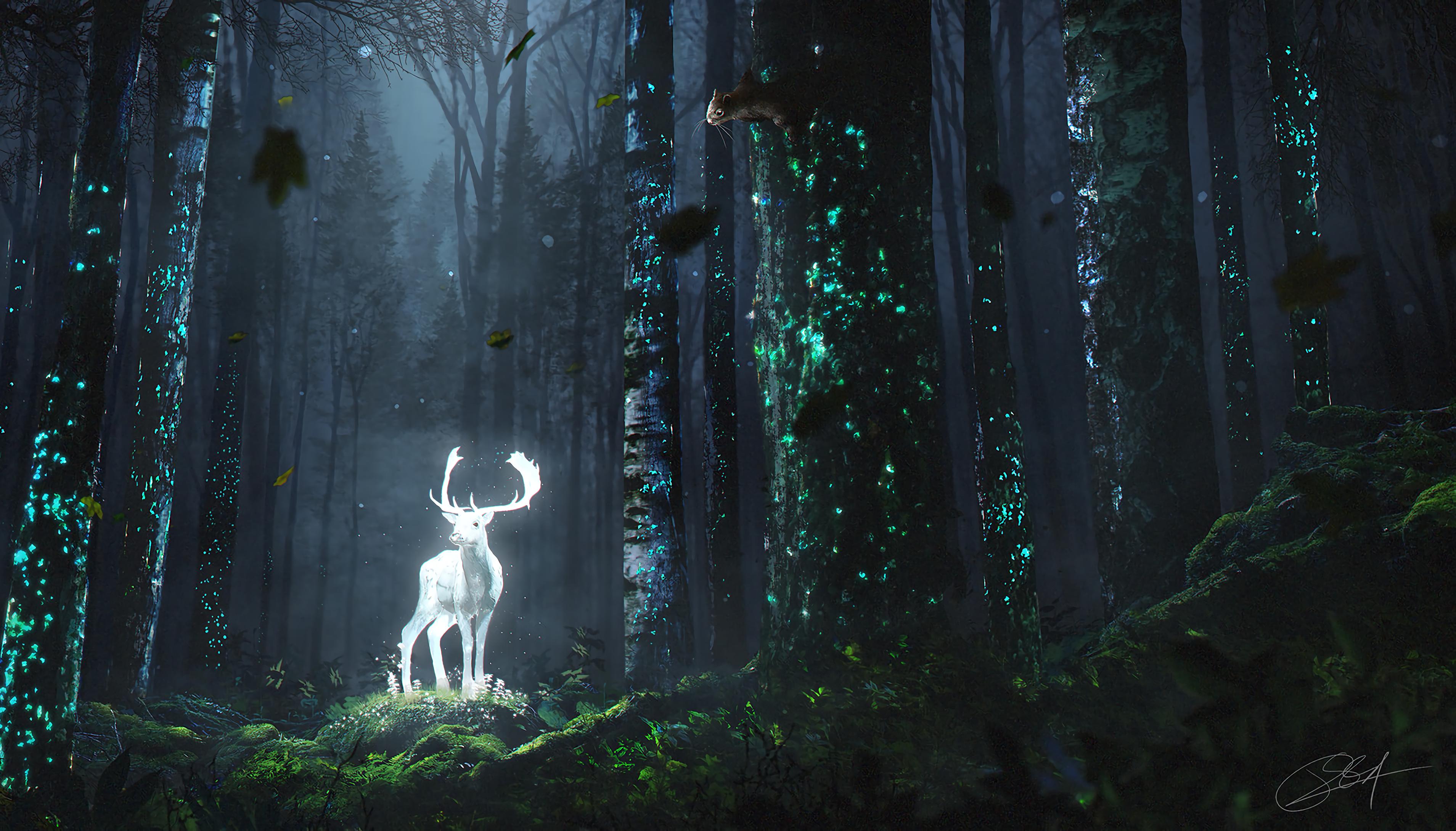 Deer forest night