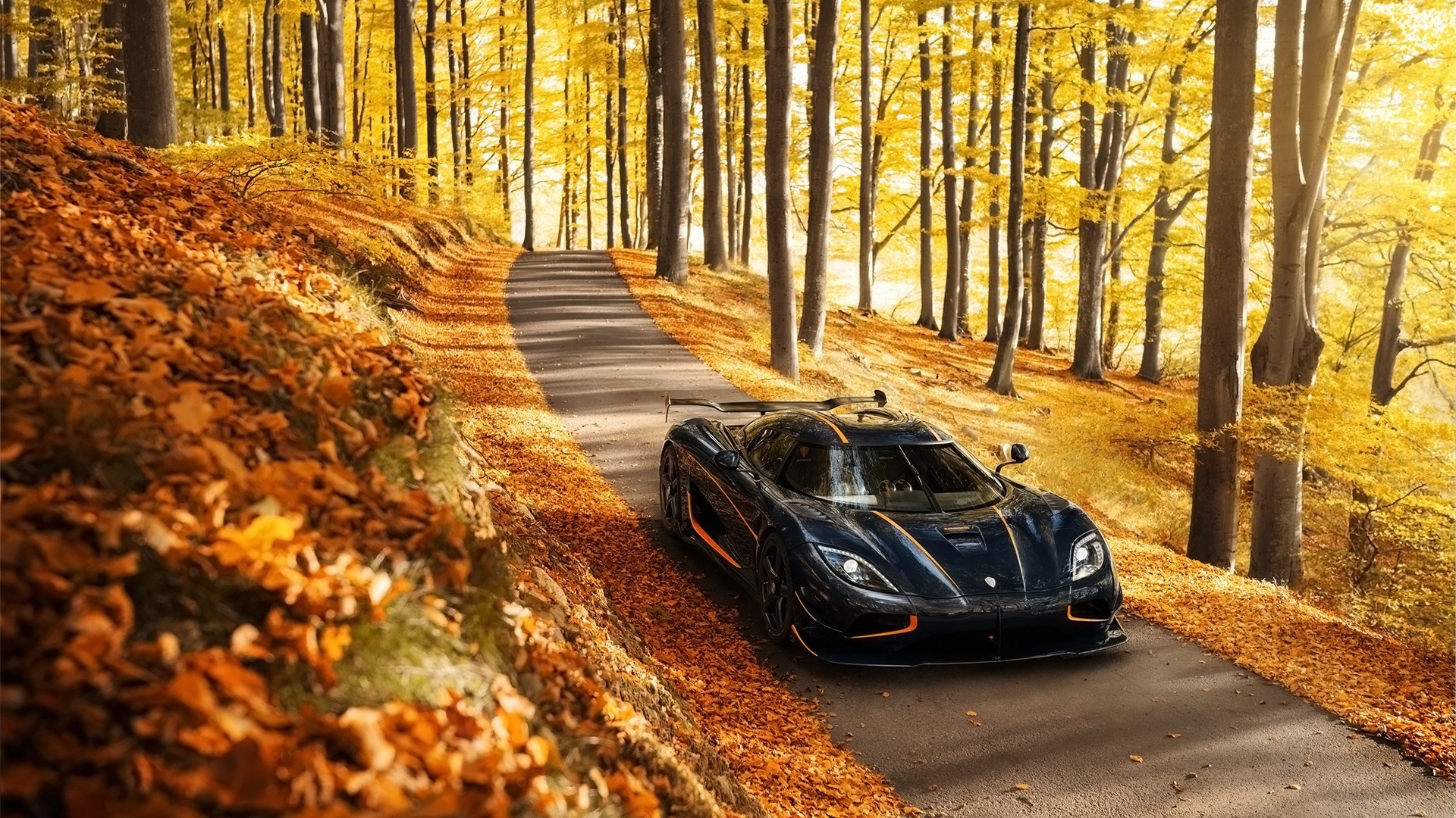 Koenigsegg agera rs side view autumn trees