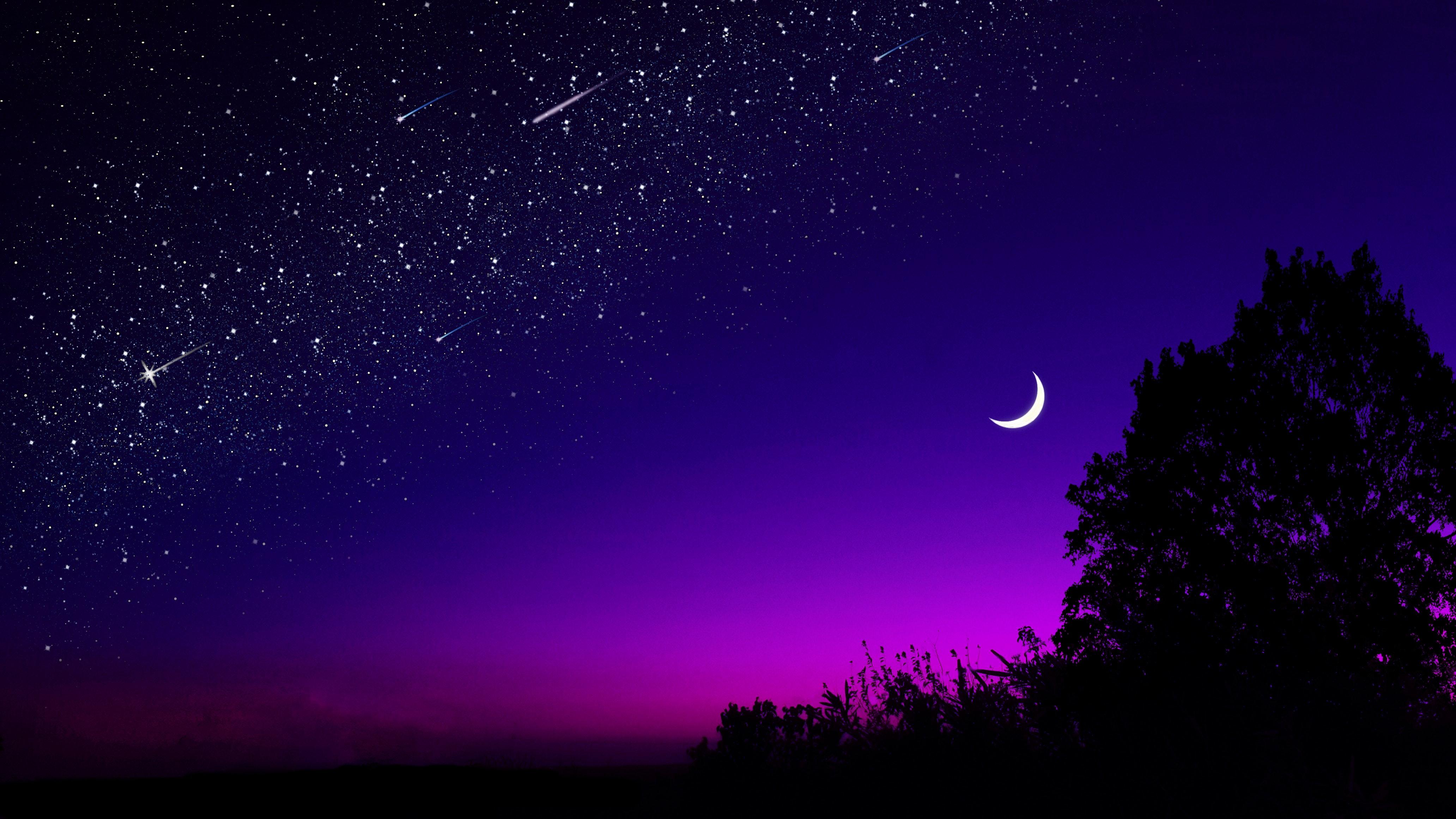 moon tree starry sky