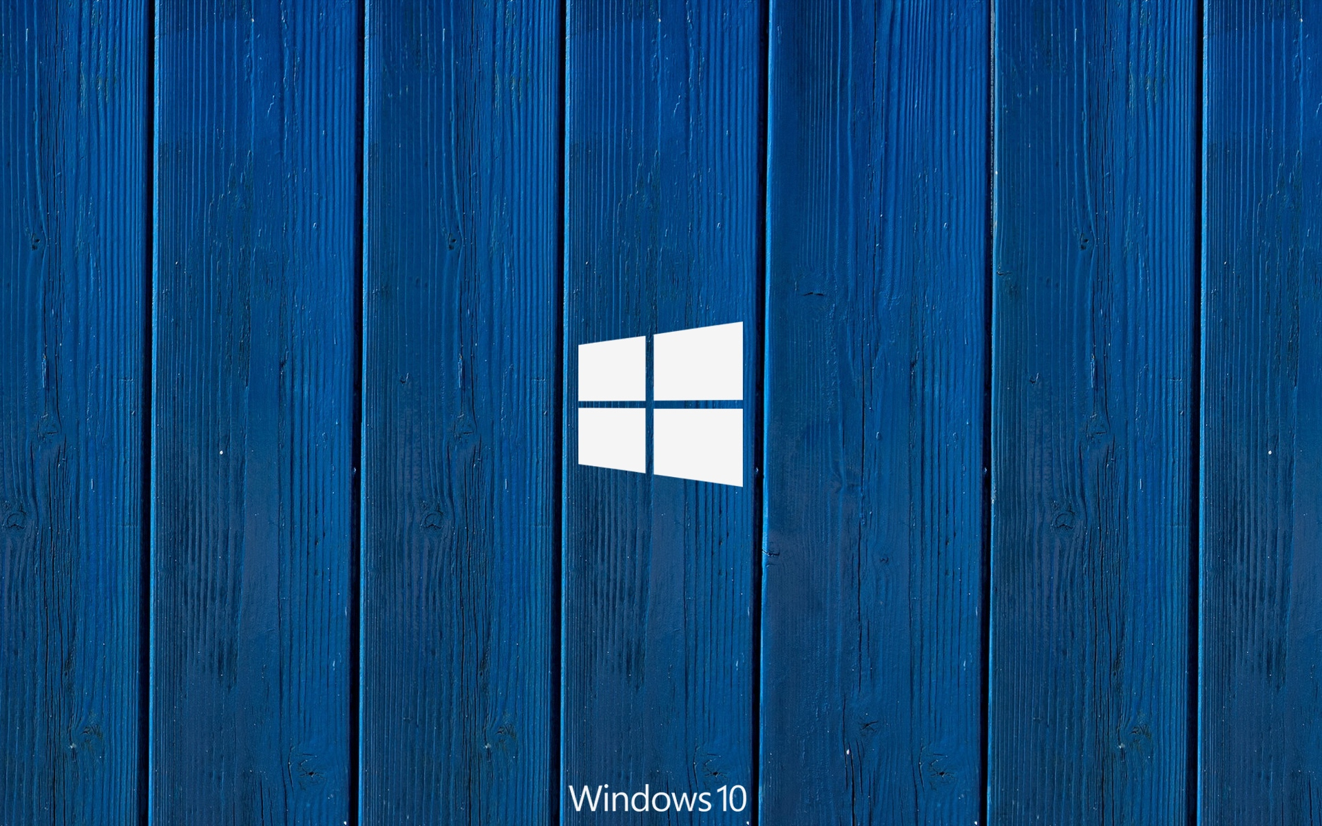 windows logo texture