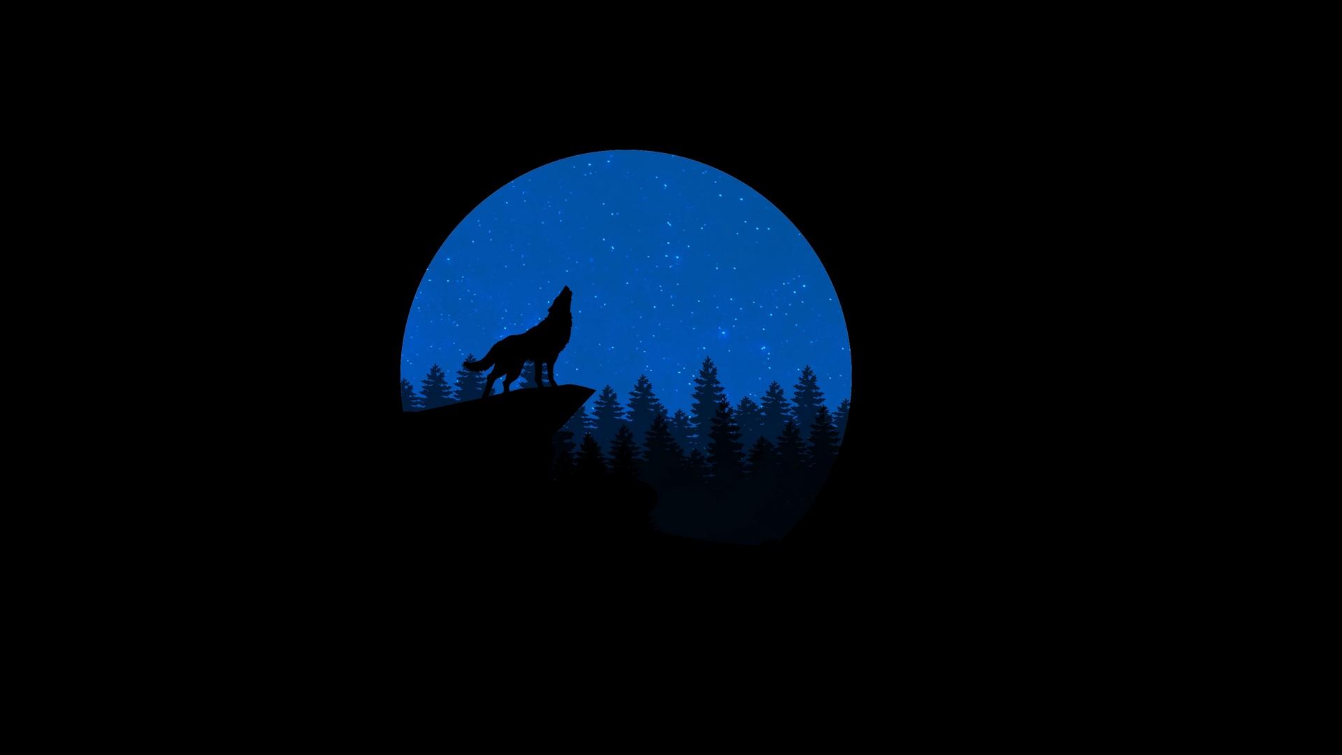 wolf minimalism art vector